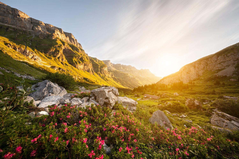 Landschaftsfotografie Meier & Kamer: Urner Boden, Kanton Uri, Schweiz
