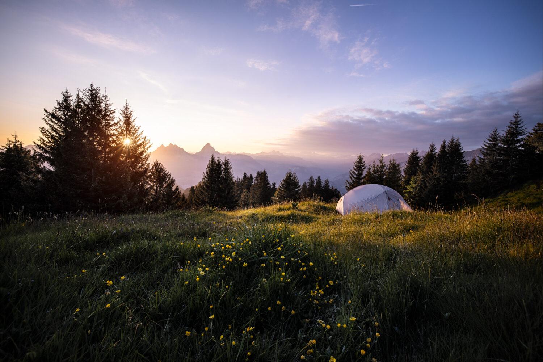 Landschaftsfotografie Meier & Kamer: Sonnenaufgang mit Mythen, Blumen und Zelt, Gottertli, Kanton Schwyz Schweiz